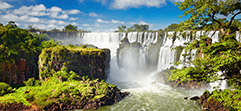 Argentina and Brazil Trips
